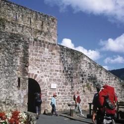 St Jean Pied de Port - Logroño  8J/7N