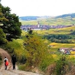 Châteaux forts des Vosges sud 8J/7N