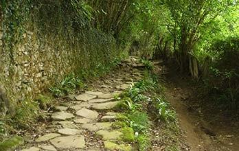 GR trails