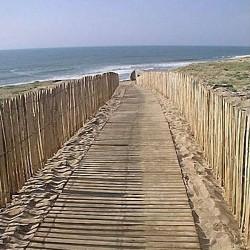 LES LANDES : Des plages de sables fin...