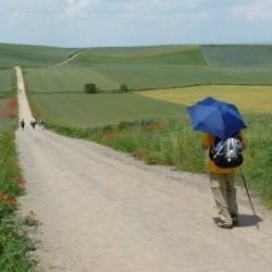 Camino Francès 11J/10N
