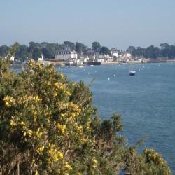 AURAY-VANNES Golfe du Morbihan 8J/7N