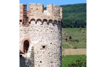 Parc régional & Châteaux forts des Vosges centre 7J/6N