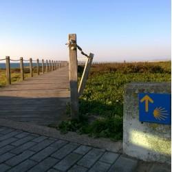 le Chemin Portugais par la côte 15J/14N