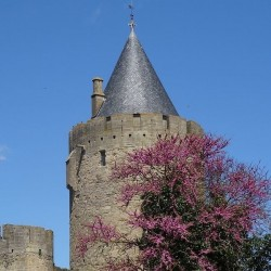Carcassonne - Lourdes  15J/14N